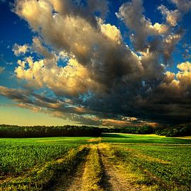 Phil Koch - Dirt Road