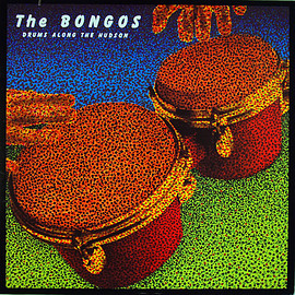 The Bongos ‎ - Drums Along The Hudson (Vinyl,LP)
