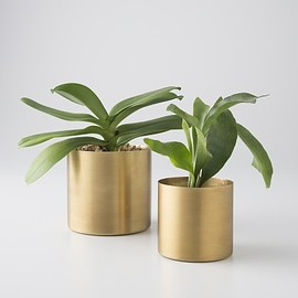 schoolhouse - brass planter