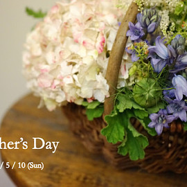 Gertrude Florist - Mother's Day 2015