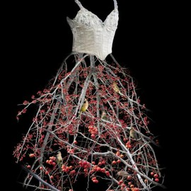 Todd Murphy - Untitled (Berry Dress), 2009