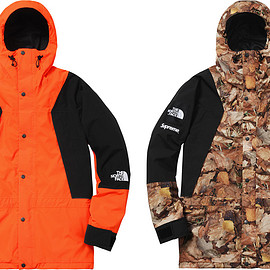 Supreme, THE NORTH FACE - Mountain Light Jacket