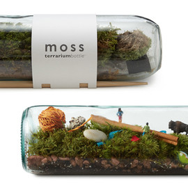 UncommonGoods - MOSS TERRARIUM BOTTLE
