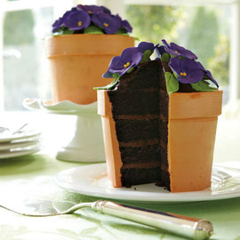 Williams' Sonoma - Perfect Endings Blooming Flower Pot Cake