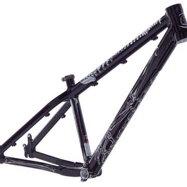 Cannondale - Chase frame (2009)
