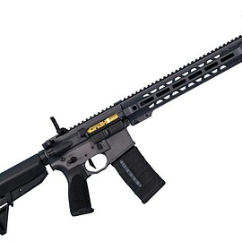 Salient Arms International - SAI GRY - Carbine (5.56, 300 BLK)