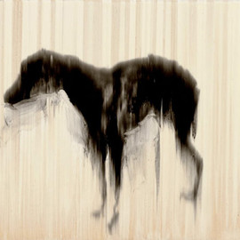 Rachel Howard - Black Dog