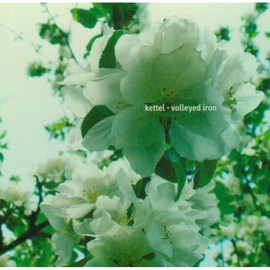 Whisper Me Wishes [Import]