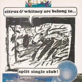 "CITRUS, WHITNEY - SPLIT SINGLE CLUB! CITRUS & WHITNEY ARE BELONG TO.. (7"")"