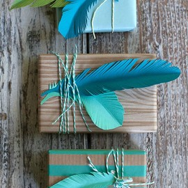Paper Feathers: cute wrapping