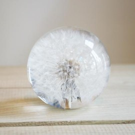 Paper Weight (Dandelion)