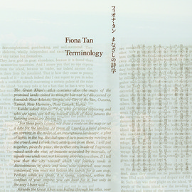 Fiona Tan - Terminology