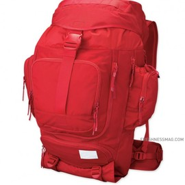Nike SB - Eugene Backpack (Red)