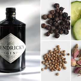 William Grant & Sons  - Hendrick's Gin