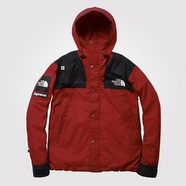 supreme - supreme x the north face