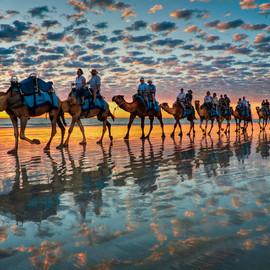 Cable Beach, Western Australia - 'Camels at Sunset'