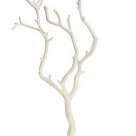 UrbanOutfitters - Little Birch Jewelry Stand