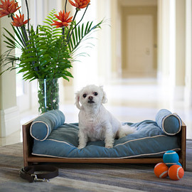 PET LOUNGE STUDIO - DAYBED