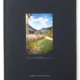 TERRI WEIFENBACH SOME INSECTS ONE PICTURE BOOK NO.67 テリー・ワイフェンバック写真集