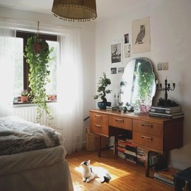 natural room