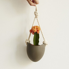 Light and Ladder Hanging Planter