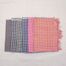 dosa - Archana's check shawl