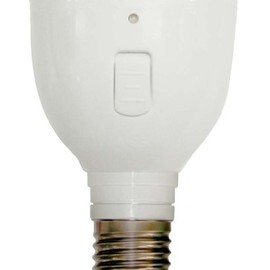 Labros - Magic Bulb MB4W-A