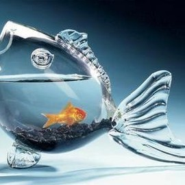 EOE  - Clear Fish-shaped Fish Bowl
