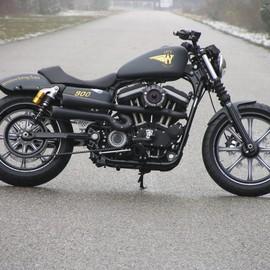 Walz Hardcore Cycles - Sportster - WCR 900