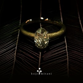 koji mitani - Cushion rose ring