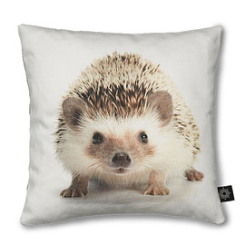 by nord - by nord クッションカバー 30×30cm Hedgehog