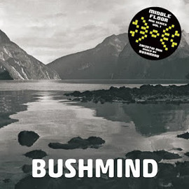 BUSHMIND - 2013 DTW MIX