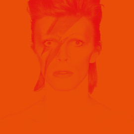 Victoria Broackes, Geoffrey Marsh - David Bowie Is