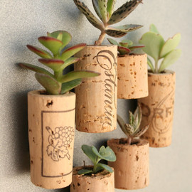 Etsy - CUSTOM Order for ranbo Succulent Cork Magnets, Mixed Sets