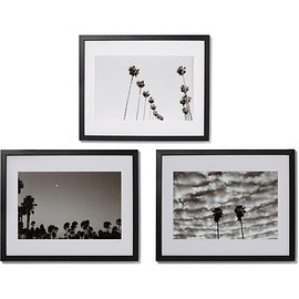 Sonic Editions - Framed West Coat Palms Triptych Prints, 16
