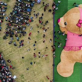 a giant teddy bear, - and the world huge teddy bear projects