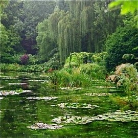 Giverny  - Giverny Garden, France, 2 hours from Paris