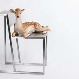 Trust in Design - Tulp Chair