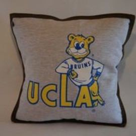 detour life - UCLA CUSHION