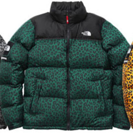 Supreme x The North Face - Down Jacket