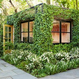 Ivy-Covered Green Cube