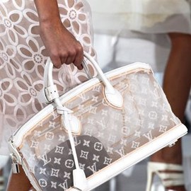 LOUIS VUITTON - sheer/bag