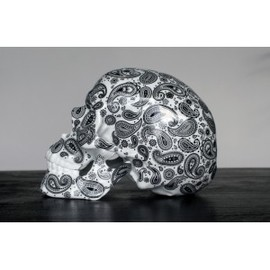 NooN - Skull Cashmire Black Porcelain by NooN