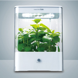 U-ING Co., Ltd. - Green Farm Cube - White