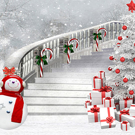 Winter Photography Background Snowman Backdrops