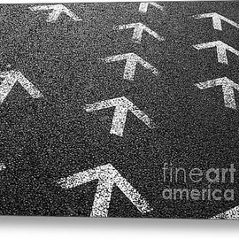 Fine Art America - Arrows On Asphalt Metal Print By Carlos Caetano