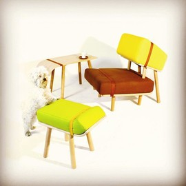 Tomski design - Hosting Hounds - dogs inspired furnitures