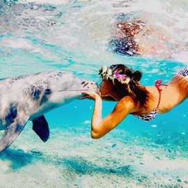 Kissing with a dolphin