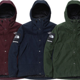 Supreme - The North Face®/Supreme 12FW