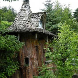 Awesome Treehouses Gallery